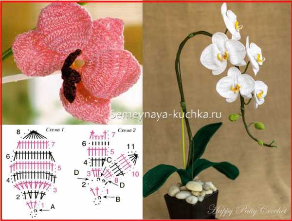 Вязанные орхидеи схема